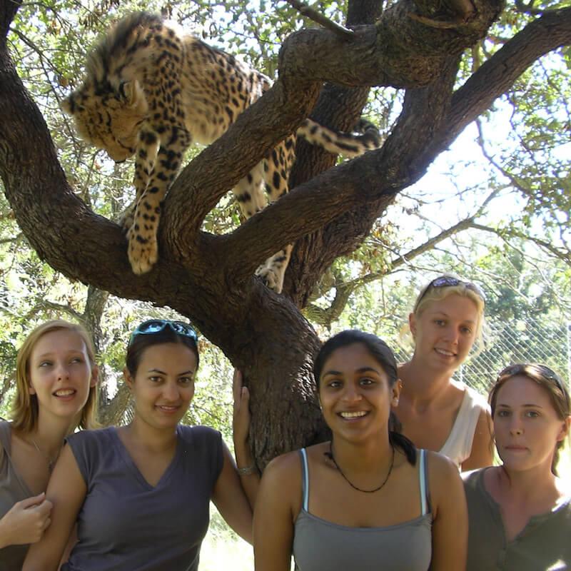 Volontaires et un léopard